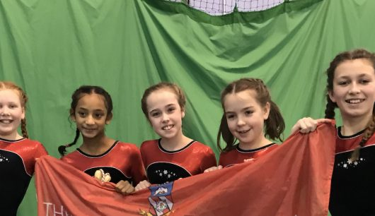Froebelian Shines at Key Steps Gymnastics Competition
